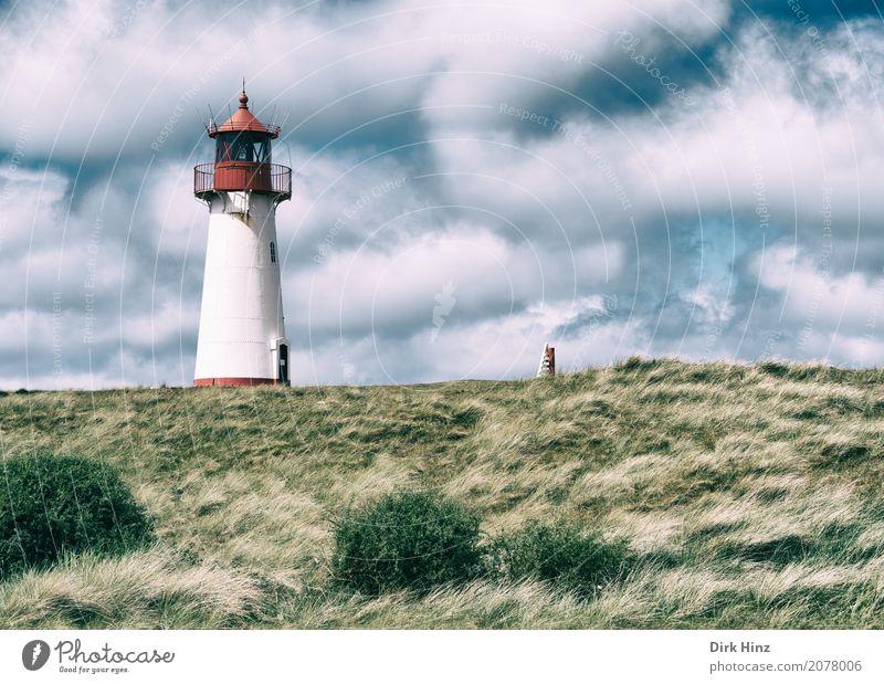 Leuchtturm in List auf Sylt Ferien & Urlaub & Reisen Tourismus Ausflug Ferne Freiheit Sightseeing Sommerurlaub Meer Insel Natur Wasser Gras Wiese Küste Nordsee