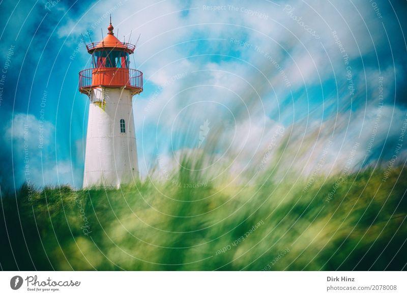 Leuchtturm in List auf Sylt Ferien & Urlaub & Reisen Ausflug Ferne Freiheit Strand Meer Insel Natur Schönes Wetter Pflanze Gras Wildpflanze Küste Nordsee blau