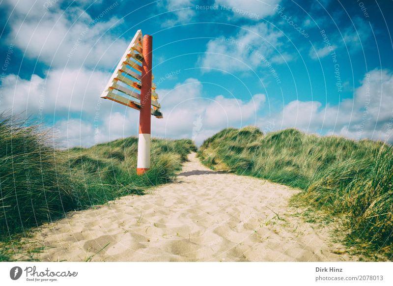 Seezeichen auf dem Ellenbogen Strand Meer Insel Natur Wasser Pflanze Gras Küste Nordsee Wege & Pfade Schleswig-Holstein Sylt nordisch Zeichen Orientierung Sand