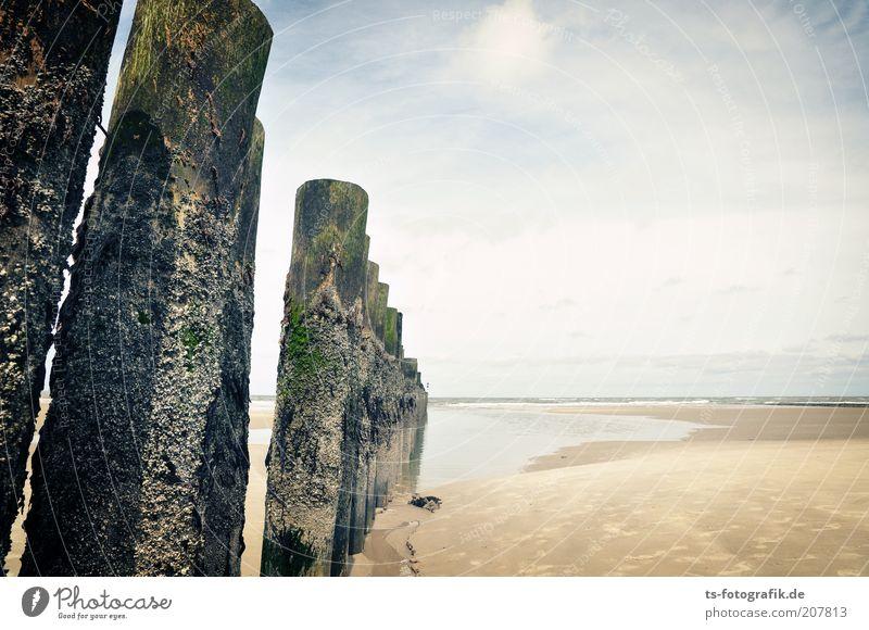 Geht's da vorn mal weiter? Wasser Himmel Meer Sommer Strand Ferien & Urlaub & Reisen Wolken Ferne Holz Sand Küste Insel Tourismus Unendlichkeit Zaun Urelemente