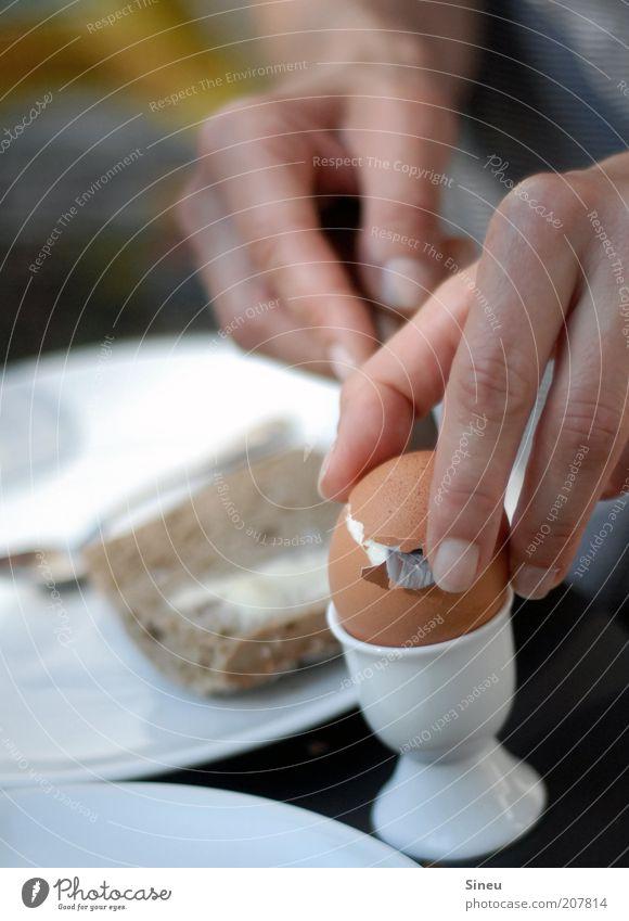 Frühstück ist fertig. Brötchen Ei Ernährung Essen Teller Messer Löffel Hand Finger 1 Mensch lecker rund ruhig Appetit & Hunger Farbfoto Außenaufnahme Morgen