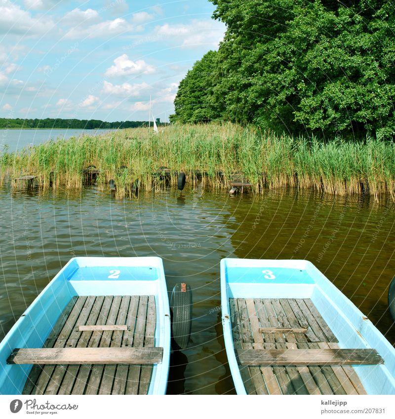 eine seefahrt die ist lustig, Natur blau grün Baum Ferien & Urlaub & Reisen Pflanze Sommer Umwelt Landschaft Glück See Freizeit & Hobby Ausflug Tourismus Sträucher Schönes Wetter