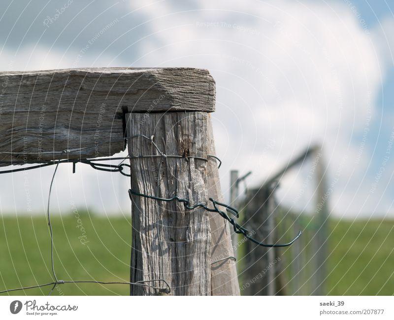 Nordsee Natur alt Sommer ruhig Wolken Wiese Landschaft Sicherheit Schutz fest verwittert Begrenzung Maschendraht Zaunpfahl