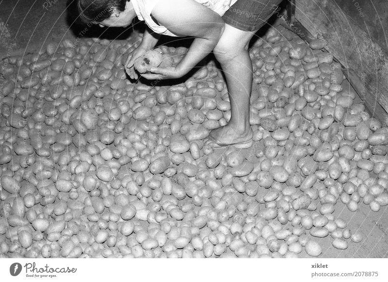 Kartoffeln Beine alt heimwärts Innenaufnahme blitzen schwarz weiß Landwirtschaft Bauernhof Dorf ländlich Lebensmittel Essen Fuß Arme Winter Barfuß Armut Frau