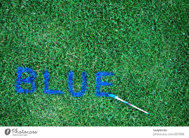 blue or green? Natur Gras Grünpflanze Zeichen Schriftzeichen blau grün Design Kreativität Kunst Pinsel Pinselstiel malen zeichnen Pinselstrich Farbfoto