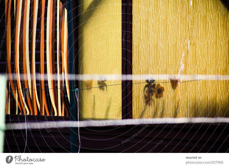 sun in my datscha Ferien & Urlaub & Reisen Pflanze Haus gelb Holz Garten Gebäude braun Tür gold Kunststoff Kitsch Schutz Balkon Vorhang Lamelle