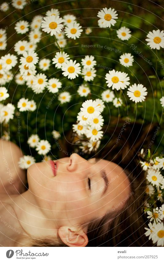 Frühlingsschlaf Frau Jugendliche Blume grün Sommer Gesicht ruhig gelb Erholung feminin Gefühle Glück träumen Kopf Zufriedenheit