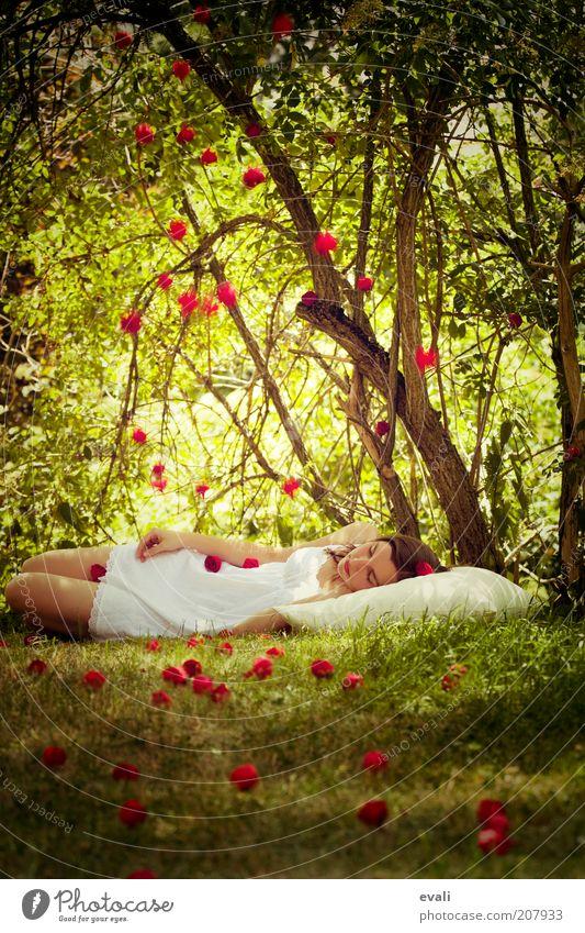 Rosenregen Frau Mensch Jugendliche weiß Baum grün rot ruhig feminin Gras Garten träumen Park Blume Erwachsene schlafen