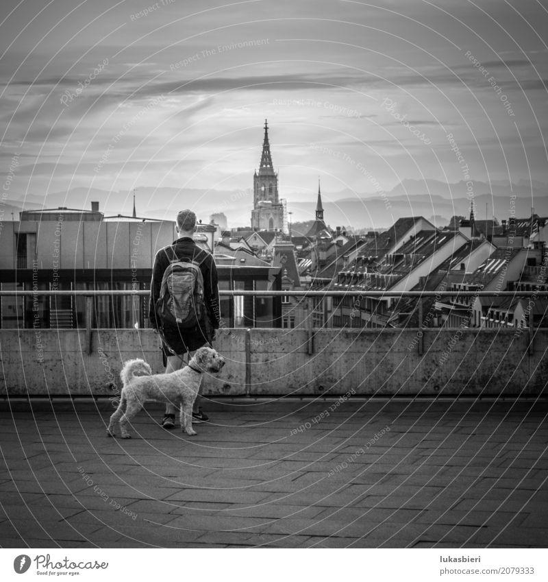 Mann mit Hund blickt auf das Berner Münster und in die Ferne Mensch maskulin Junger Mann Jugendliche Erwachsene 1 18-30 Jahre Vorfreude Kraft Mut Tierliebe