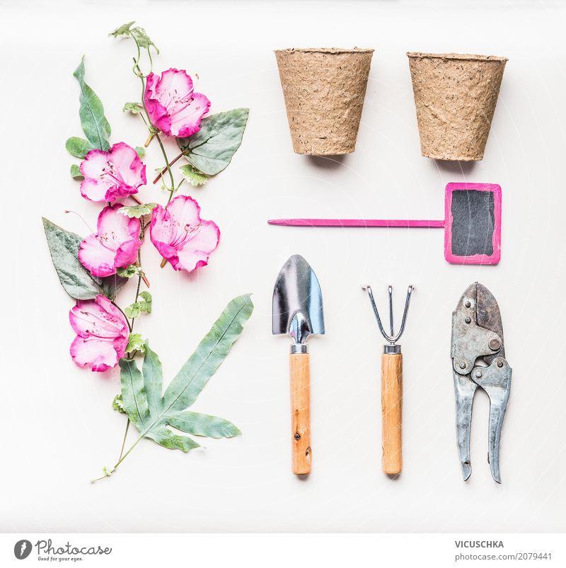 Rosa Garten Handgeräte Set Lifestyle Stil Design Freude Freizeit & Hobby Sommer Häusliches Leben Natur Pflanze Blume Blatt Blüte Dekoration & Verzierung