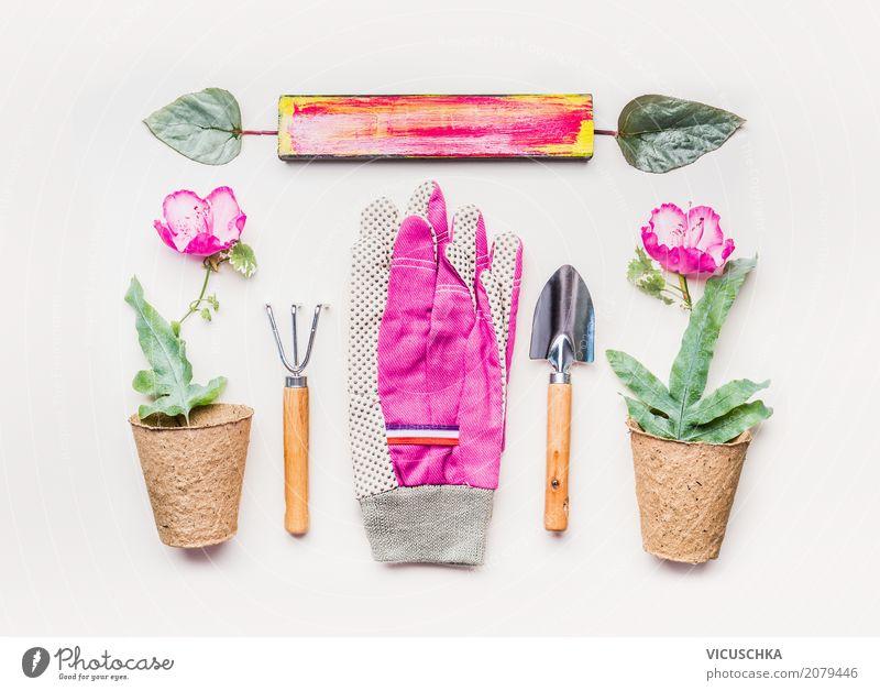 Garten Handgeräte und Blumentopfe Natur Pflanze Sommer weiß Freude Lifestyle Frühling feminin Stil Design rosa Freizeit & Hobby modern Dekoration & Verzierung