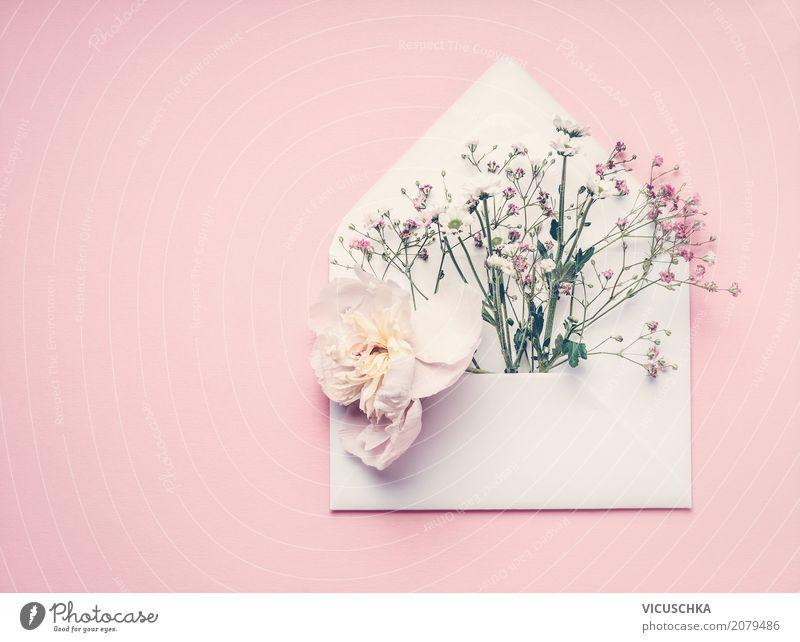 Geöffnete Briefumschlag mit Blumen Natur Pflanze Lifestyle Liebe feminin Stil Feste & Feiern rosa Design modern Dekoration & Verzierung Geburtstag Geschenk