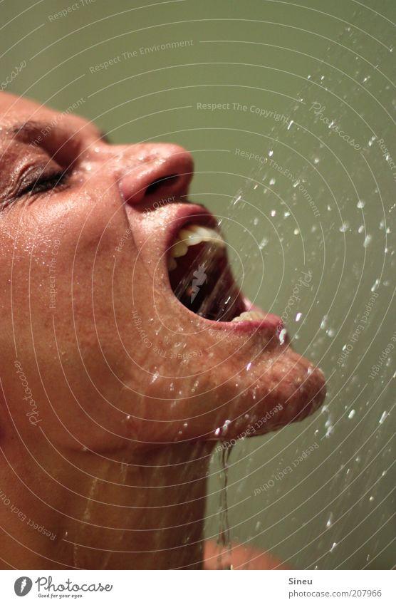 Durst Körperpflege Wellness Zufriedenheit Erholung Frau Erwachsene Kopf Gesicht Auge Nase Mund Lippen Zähne Reinigen trinken nass frisch Frauengesicht