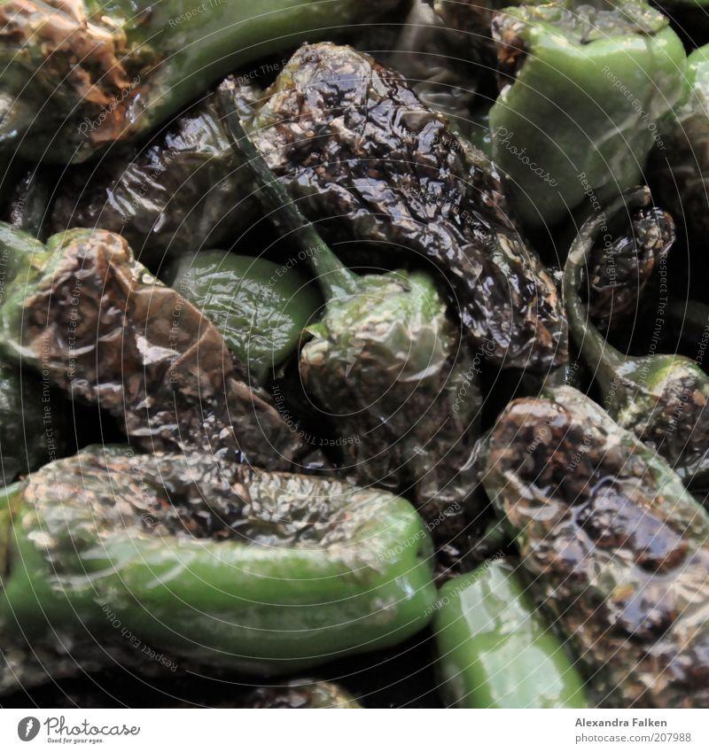 Pimentos grün Lebensmittel Kochen & Garen & Backen Gemüse Grillen Paprika Ernährung angebrannt gebraten