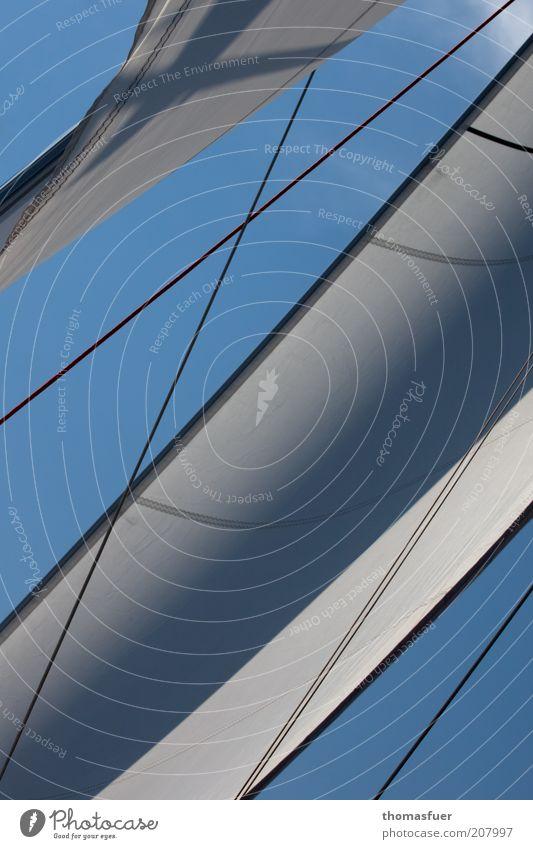 weiße Schwingen blau Meer Sport Freiheit Bewegung Zufriedenheit Wind elegant ästhetisch Segeln Schönes Wetter Kontrolle Leichtigkeit Sommerurlaub