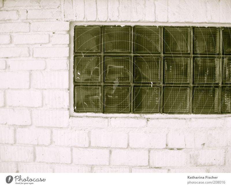 #208016 Fabrik Mauer Wand Fassade Stein Glas grün weiß Steinmauer Backsteinwand Backsteinfassade Glasbaustein Glasscheibe Bauwerk Bauweise Farbfoto
