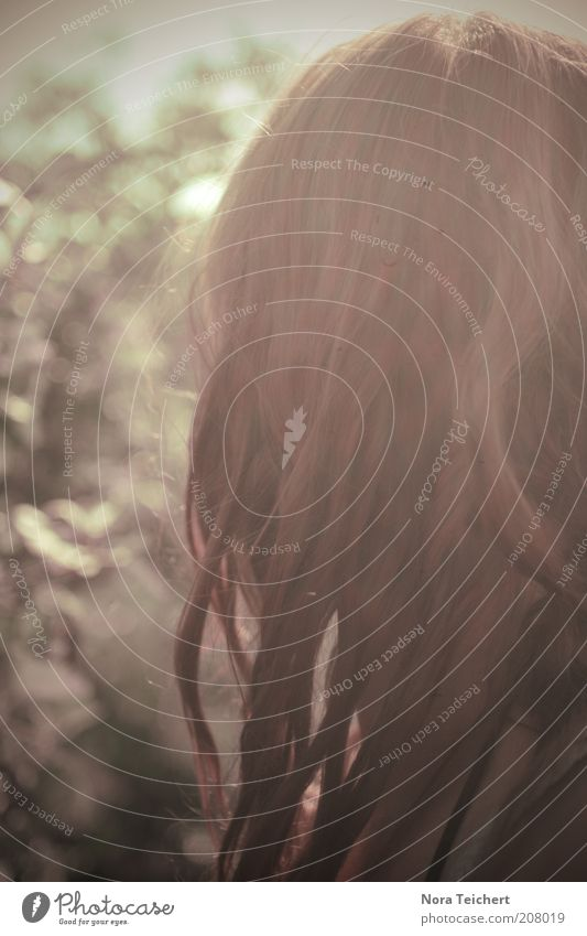 traumtänzerin feminin Frau Erwachsene Haare & Frisuren Umwelt Natur Pflanze Sommer Schönes Wetter Sträucher atmen leuchten träumen ästhetisch frei schön ruhig
