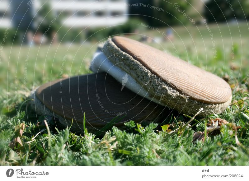 x Natur alt grün Sommer Ferien & Urlaub & Reisen Wiese Gras Schuhe Rasen schäbig ökologisch Bioprodukte Hippie Liegewiese Leinen