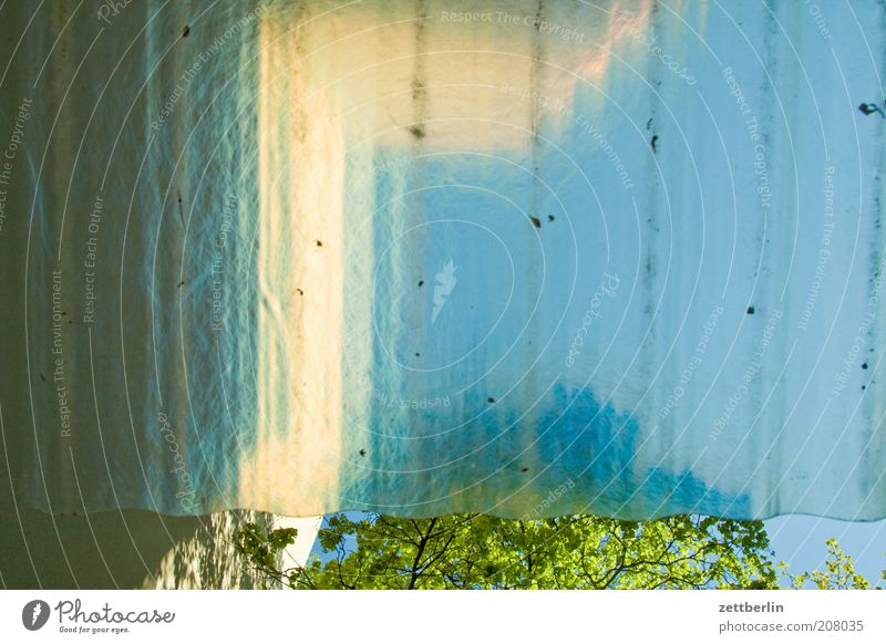 Überdachter Fahrradstand Friedenau Natur Baum Sommer Fenster Linie Wetter Dach Kunststoff Baumstamm durchsichtig Baumkrone Scheibe vertikal parallel Blauer Himmel Wetterschutz