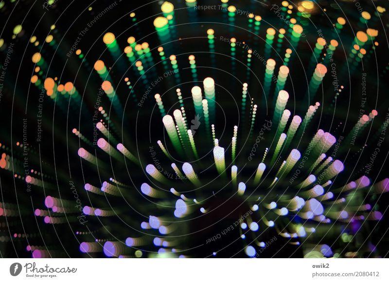 Irrlichter Lampe Kunststoff fliegen glänzend leuchten Fröhlichkeit Zusammensein Glück Unendlichkeit klein rund viele verrückt blau gelb grün violett orange