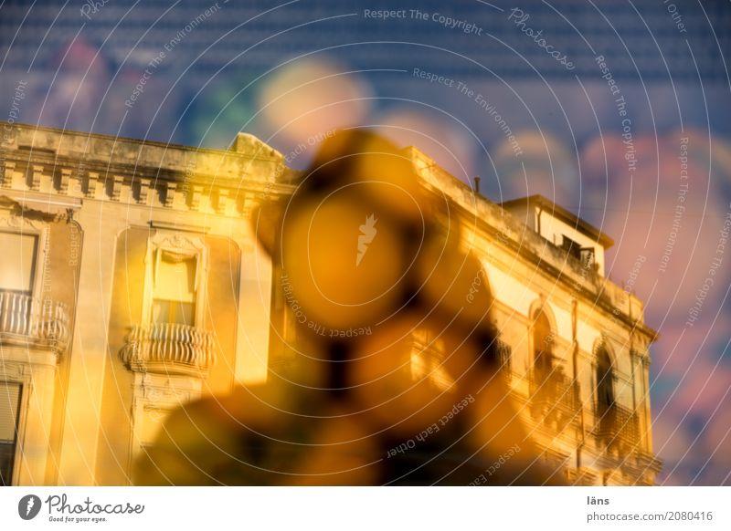 Syrakus Lebensmittel Frucht Ferien & Urlaub & Reisen Ausflug Sightseeing Sommer Mensch maskulin 1 Italien Haus Gebäude Architektur Hut träumen Neugier Sehnsucht