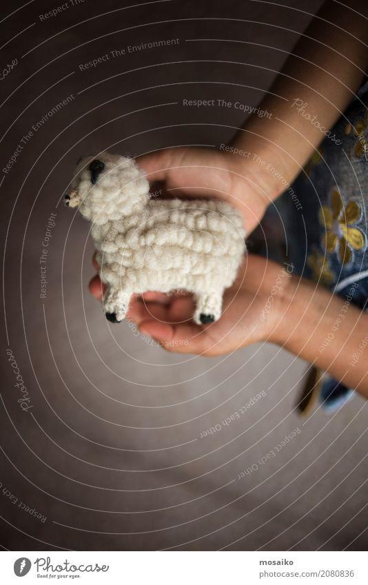 Kind hält kleines Wollschaf Hand Freude Winter Gesundheit Freizeit & Hobby Kindheit Kreativität lernen Geschenk Hilfsbereitschaft Hoffnung Bildung Frieden