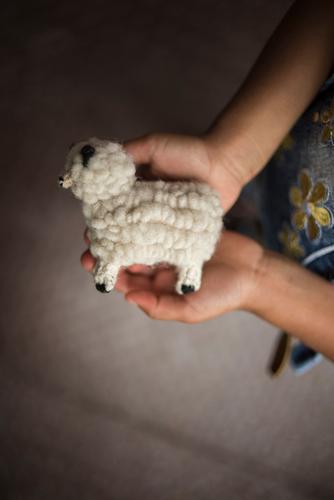 Kind hält kleines Wollschaf Kindererziehung Bildung Kindergarten lernen Kindheit Hand 3-8 Jahre Freizeit & Hobby Freude Hilfsbereitschaft Hoffnung Kreativität