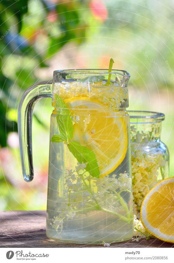 Ältere Limonade mit Zitrone auf altem Tabellenholz Natur Pflanze Sommer grün Blume gelb Blüte Garten Frucht frisch Kräuter & Gewürze Getränk Medikament