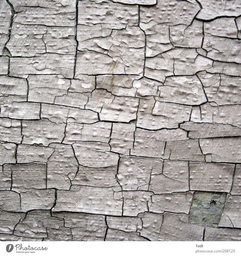 64 Jahre Menschenleer Haus alt ästhetisch dreckig einzigartig kaputt Wand Lack blättern blätternd Riss Blase Bröckchen Putz Mauer Farbfoto Nahaufnahme