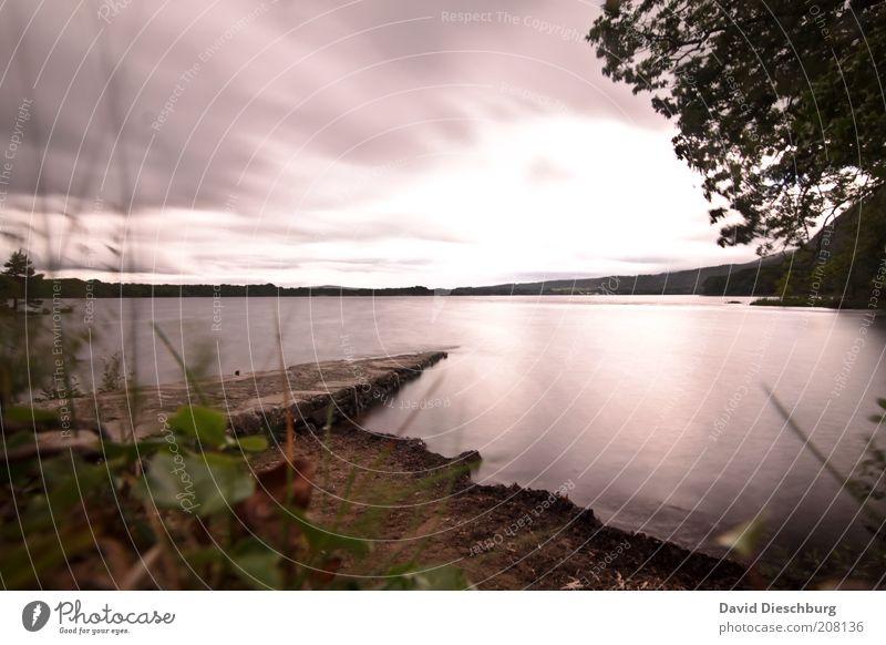 Muckross Lake Ferien & Urlaub & Reisen Ausflug Freiheit Landschaft Pflanze Wasser Wolken Gewitterwolken Horizont Sommer Wetter schlechtes Wetter Baum Seeufer