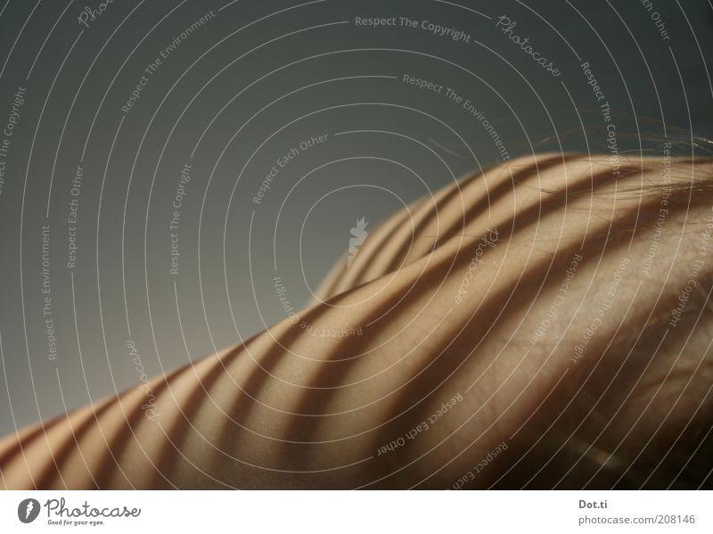 unter dem Vulex®-Fenster Mensch Haare & Frisuren Körper Haut Streifen Schulter Textfreiraum links gestreift Jalousie Lamellenjalousie Detailaufnahme Muster