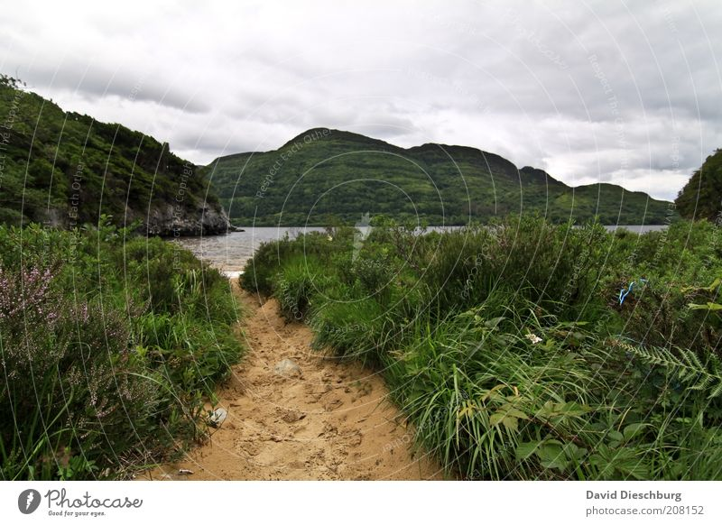 Lough Leane Himmel Natur Wasser weiß grün Sommer Pflanze Wolken Landschaft Berge u. Gebirge Frühling Gras Wege & Pfade See Felsen Wind