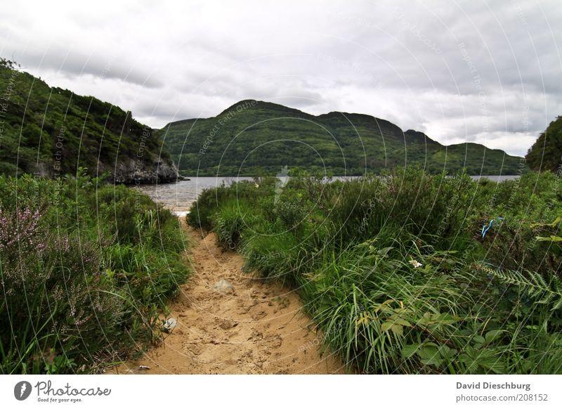 Lough Leane Natur Landschaft Pflanze Wasser Himmel Wolken Frühling Sommer Wind Gras Felsen Berge u. Gebirge Bucht See grün weiß Republik Irland Wege & Pfade