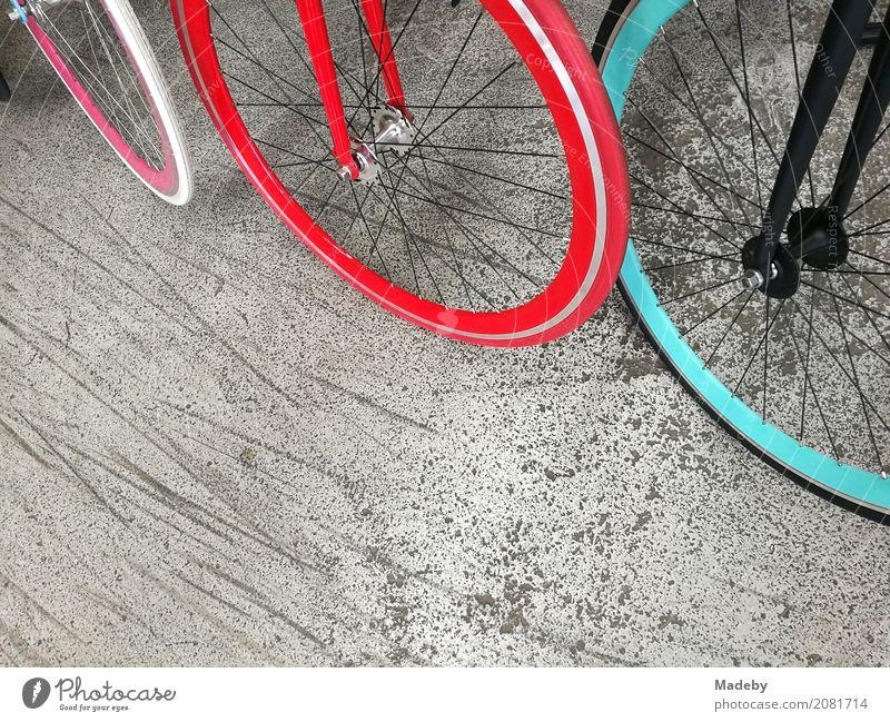 Modene Citybikes mit knallbunten Felgen und Reifen Stadt rot Erholung Freude Straße Lifestyle Sport Bewegung Stil Party grau Design Verkehr Fahrrad