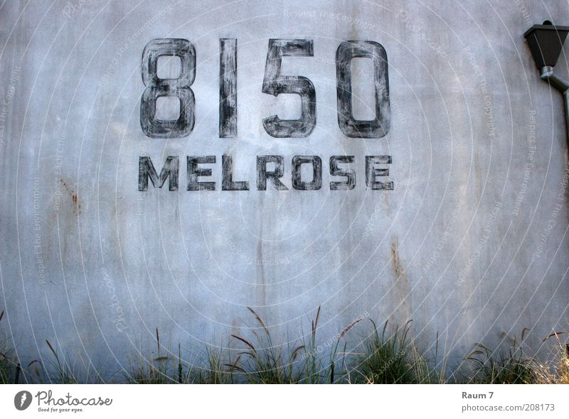 8150 Wand Gras grau Mauer Fassade Schriftzeichen