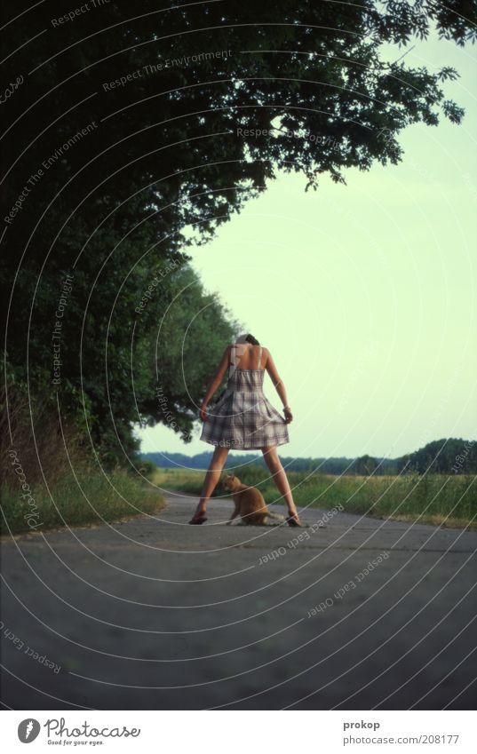 Katzentanz Mensch Frau Himmel Natur Jugendliche schön Baum Pflanze Freude Tier Erwachsene Umwelt Landschaft Wiese Wege & Pfade