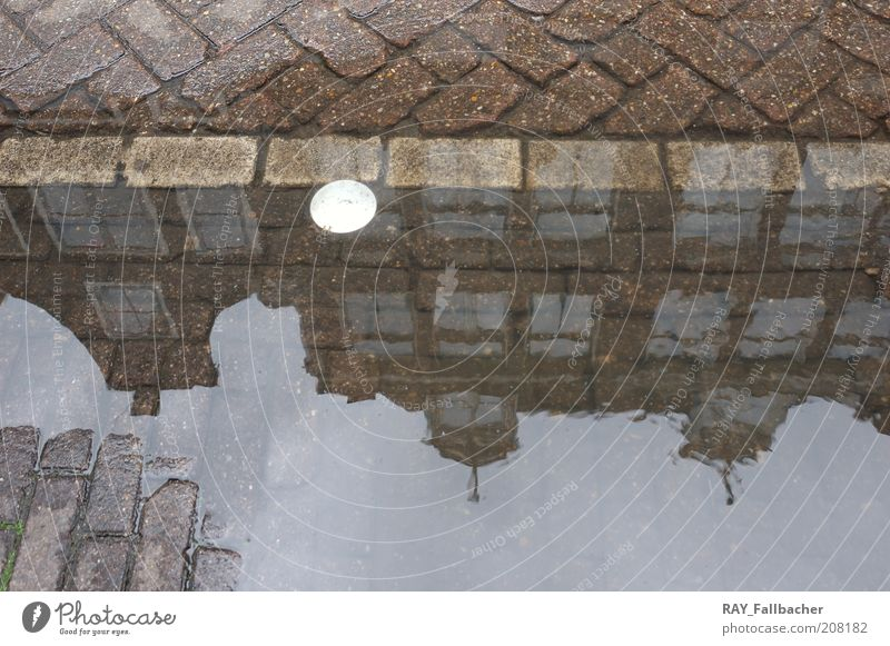 Amsterdam Pfütze als Spiegel Wasser Stadt Ferien & Urlaub & Reisen Haus Straße Fenster Gebäude Architektur Fassade einzigartig Bauwerk Pfütze Pflastersteine Sightseeing Amsterdam
