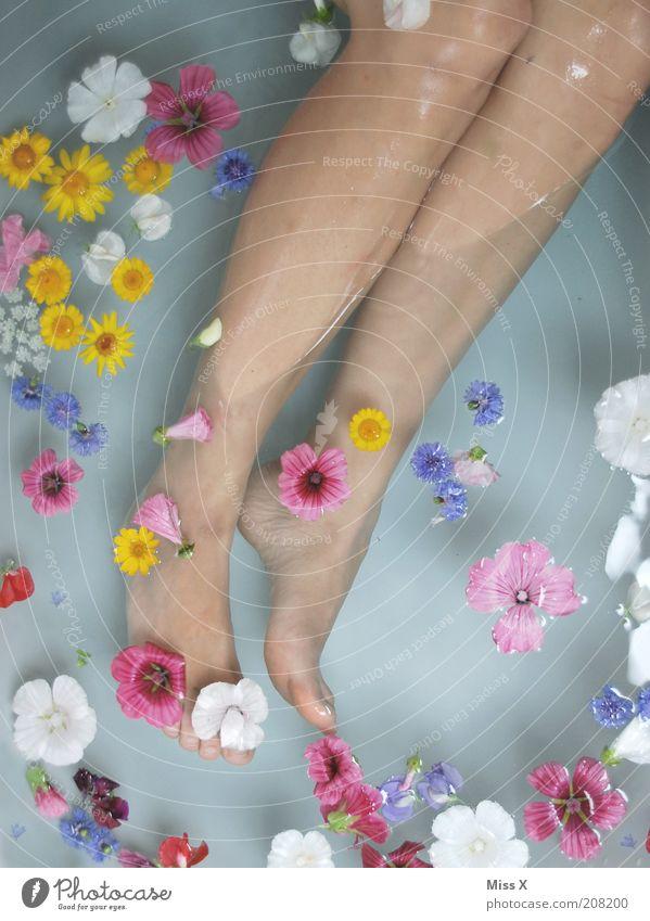 Blütenmeer Mensch Wasser schön Blume ruhig Erholung feminin Blüte Beine Fuß Zufriedenheit Schwimmen & Baden Bad Wellness rein Blühend