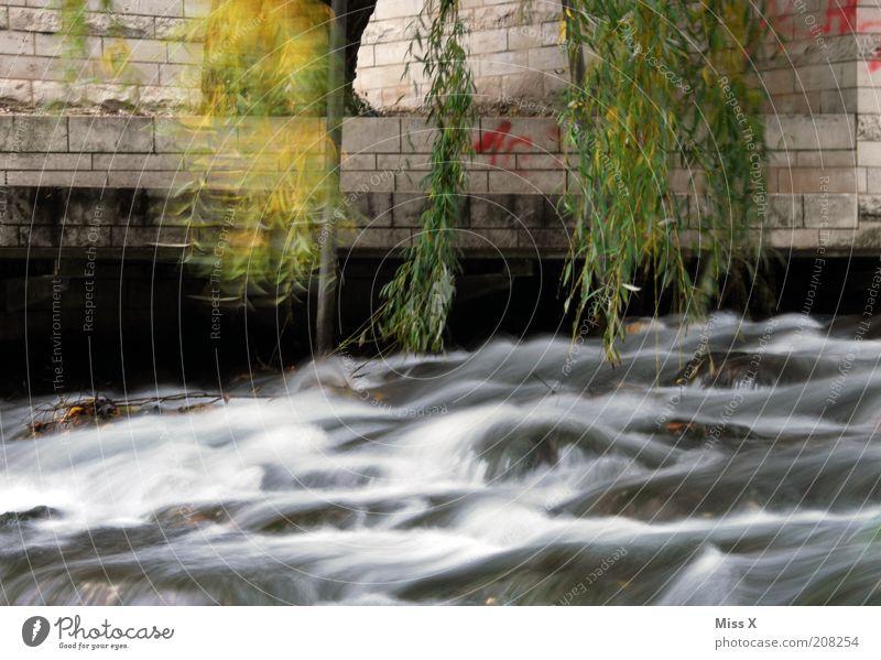 Großstadtrauschen Wasser Stadt dunkel Wand Mauer Graffiti nass trist Fluss Bach Wasserfall Weide Rauschen Baum Umwelt