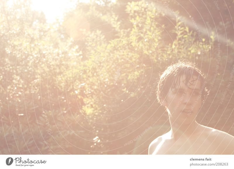 Urlaub Mensch Natur Jugendliche Baum Kopf hell maskulin frisch Sträucher heiß Brust 13-18 Jahre Schulter Junger Mann