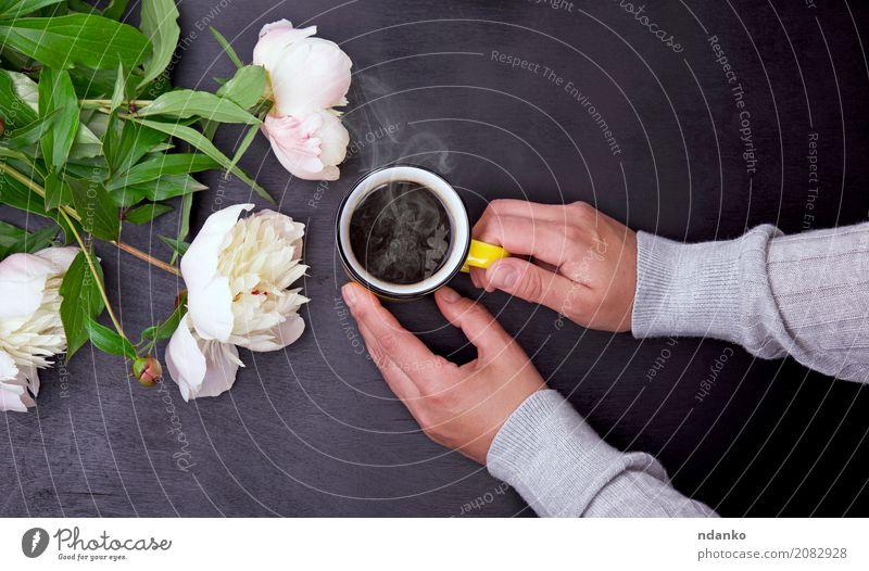 Gelber Becher in den weiblichen Händen Frühstück Getränk Kaffee Espresso Tasse Tisch Restaurant Hand Blume Blumenstrauß Holz Blühend genießen hängen frisch heiß