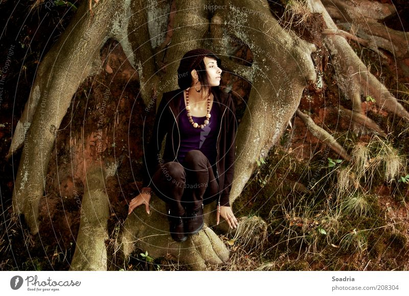I know a place where we can go. Mensch Frau Natur Jugendliche alt Baum Einsamkeit ruhig Erwachsene feminin Gras Haare & Frisuren Stil Mode Junge Frau