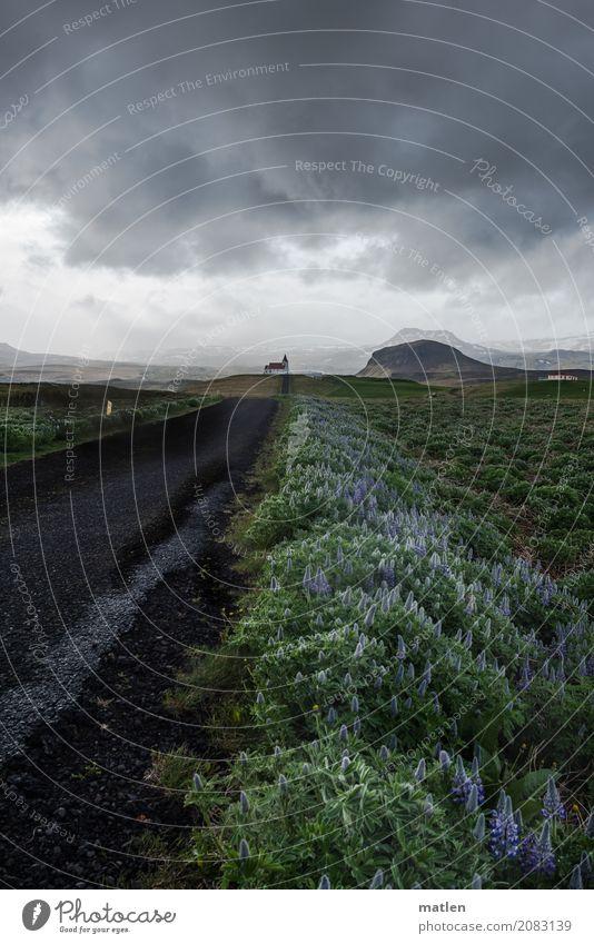 Kirchweg Natur Landschaft Pflanze Himmel Wolken Gewitterwolken Horizont Frühling schlechtes Wetter Berge u. Gebirge Kirche Wege & Pfade dunkel blau grau grün