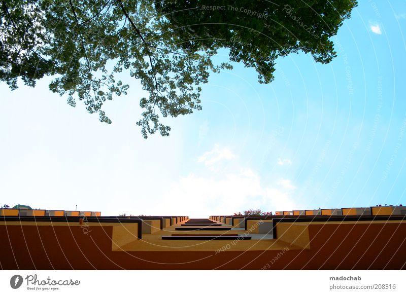 um die wette wachsen Himmel Natur Baum Sommer Haus Fassade Hochhaus Wachstum Perspektive leuchten Häusliches Leben Schönes Wetter Balkon positiv Gegenteil Wohnhochhaus