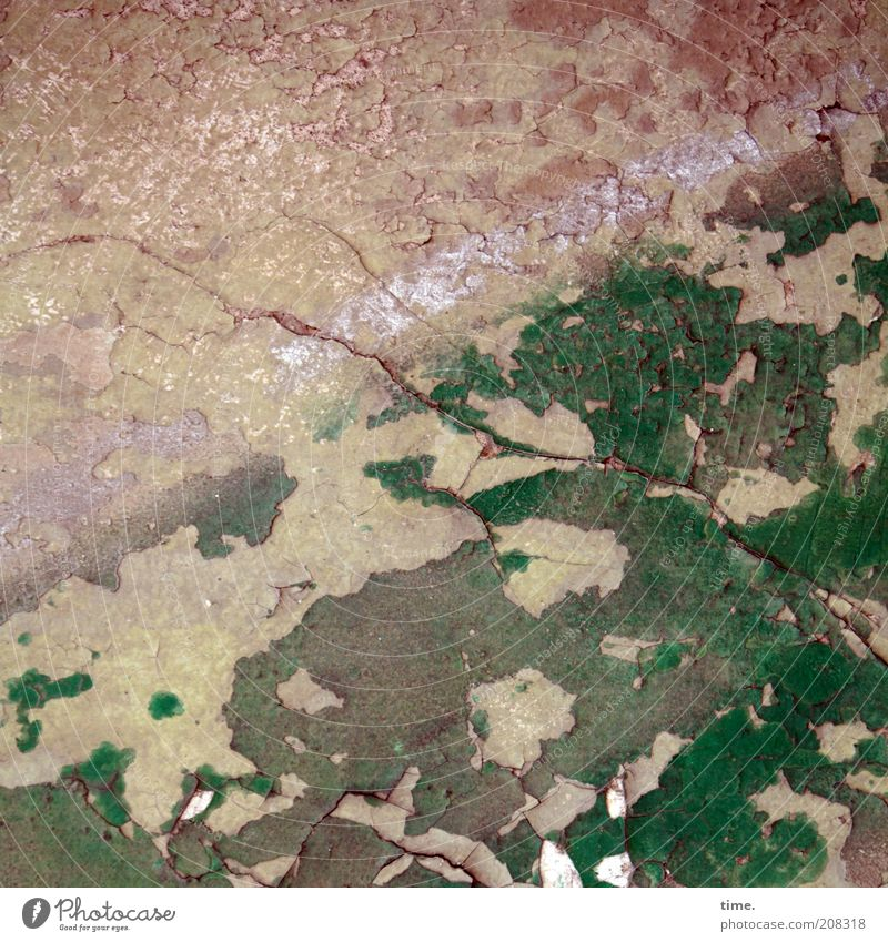 Lebenslinien #15 alt grün Haus Wand rosa trist kaputt Baustelle verfallen Riss Renovieren Putz Lack Fuge scheckig abblättern