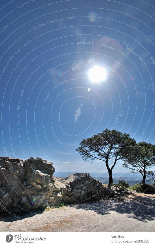 Sie haben ihr Ziel erreicht ...... Baum Sonne blau Sommer Ferien & Urlaub & Reisen ruhig Einsamkeit oben Berge u. Gebirge Freiheit träumen Stein Felsen ästhetisch heiß Unendlichkeit