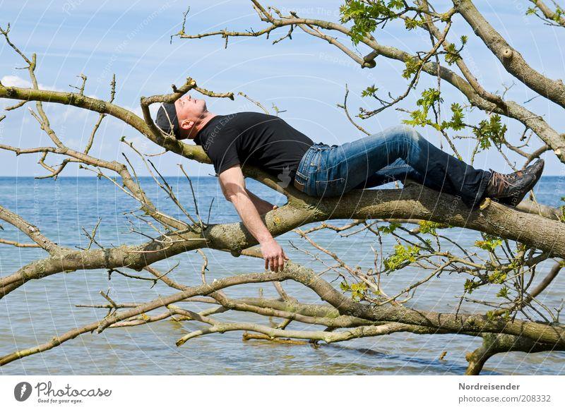 Strandmobiliar Mann Natur Baum Meer Sommer Freude Strand Ferien & Urlaub & Reisen Erholung Stil Freiheit träumen Zufriedenheit Gesundheit Erwachsene schlafen