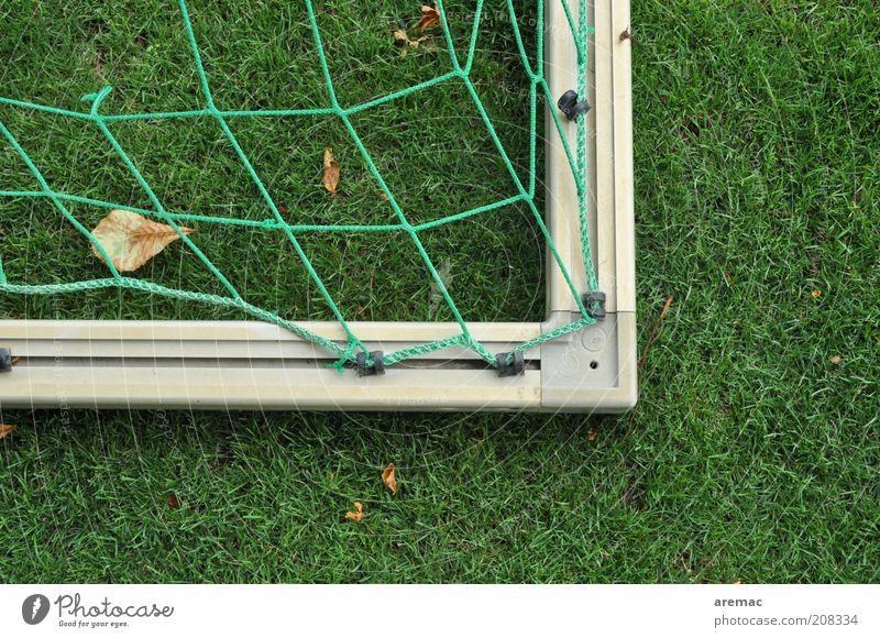 Sommerpause Sport Ballsport Fußballtor Tor Sportstätten Fußballplatz Gras grün ruhig Farbfoto Außenaufnahme Nahaufnahme Menschenleer Textfreiraum rechts