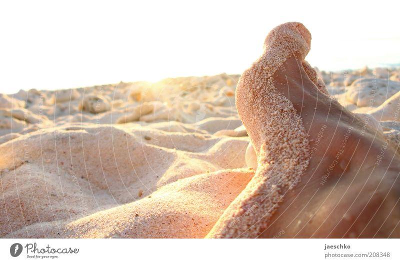 sitting, waiting, wishing Ferien & Urlaub & Reisen Sonne Sommer Strand Erholung Sand träumen Fuß Zufriedenheit nass liegen groß frei Wassertropfen authentisch