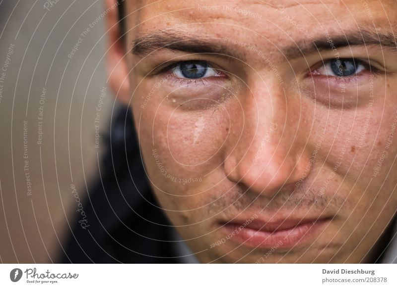 Irische Stimmung Mensch Mann Jugendliche Erwachsene Gesicht Auge Kopf Junger Mann natürlich 18-30 Jahre Haut Mund maskulin Nase authentisch einzeln
